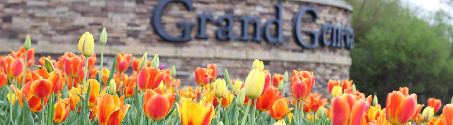Tulips at the Entrance to Grand Geneva
