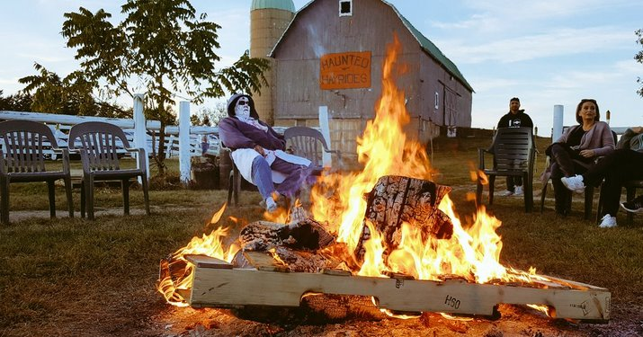 Bonfire at Dan Patch Stables