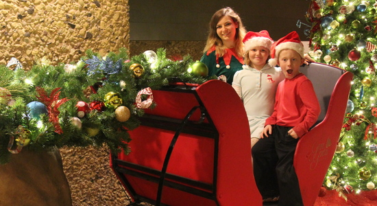 Holiday sleigh filled with kids