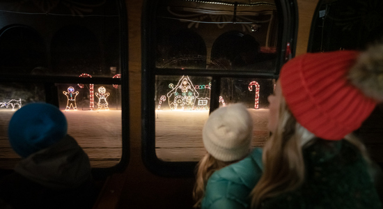 Trolley Tour of Lights